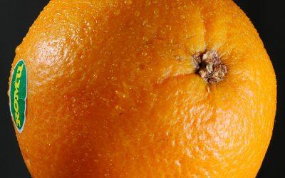Neziskovky môžu od Orangeu vyhrať 10 000