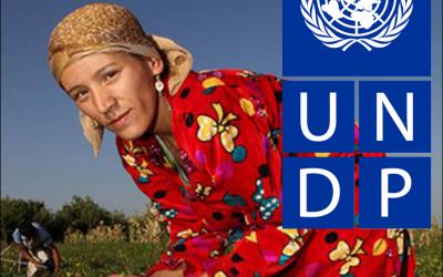 Buďte bližšie k UNDP!