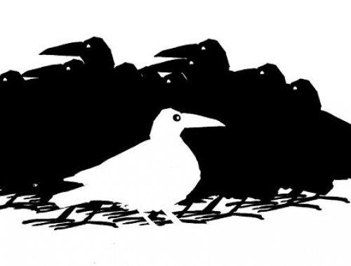 InformácieHľadajú sa príbehy Bielych vrán
