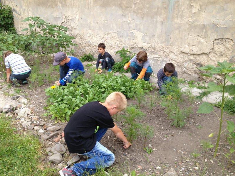 InformáciePoďte sa túlať so Živicou po záhradách, ktoré učia!