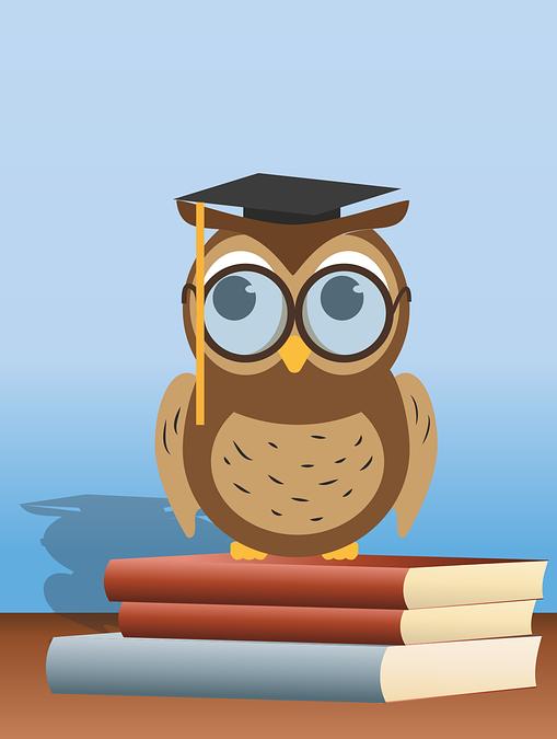 PonukyKvalita vzdelávania