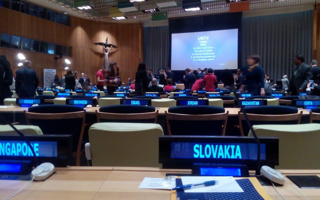 InformácieRada mládeže Slovenska na zasadnutí OSN